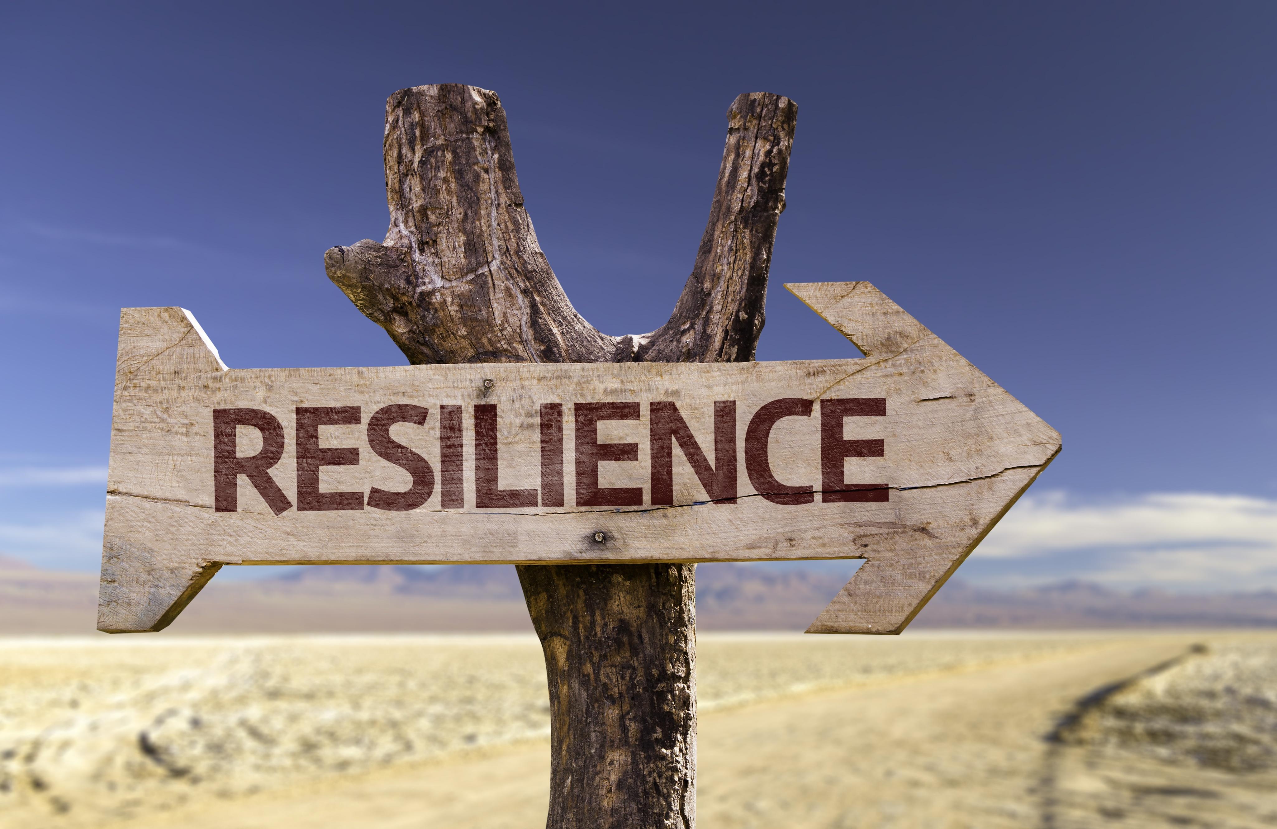 cyber resilience .jpeg